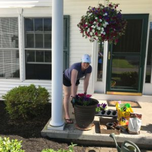 Sprucing-up our flowerpots