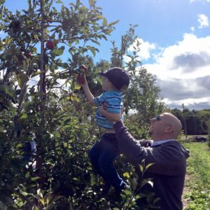 """Matthew's first time apple picking … """"hey dad can you give me a lift?"""""""