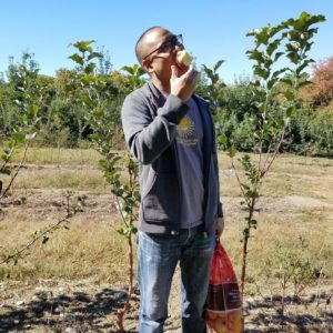 Peter is making sure that we are bringing home enough apples from Ochs Orchard, NY to make apple pies